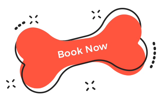 https://poshpuppy.in/wp-content/uploads/2019/08/book_now.png